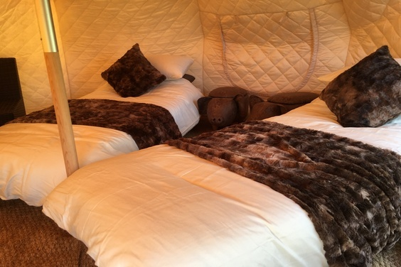 Glamping Twin Beds